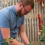 Chilin tulisuutta mitataan scovilleissa