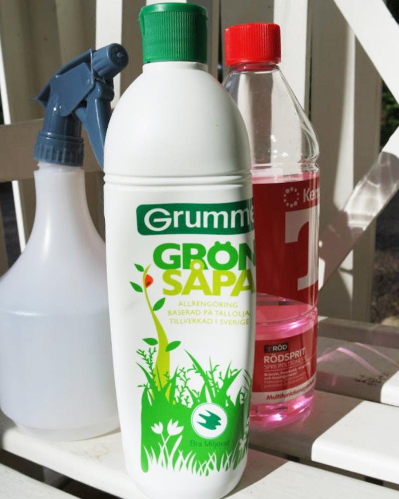Tuholaiset kasvihuoneessa