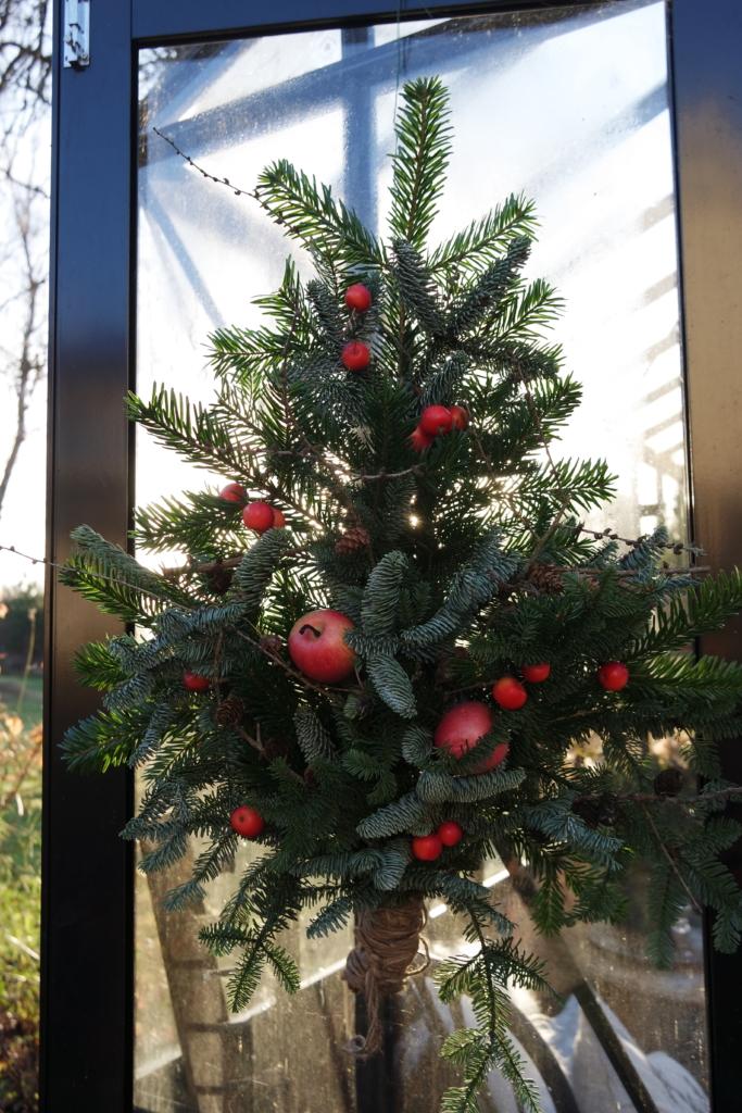 Ensimmäinen adventti ‒ tervetuloa joulu (ja vieraat)