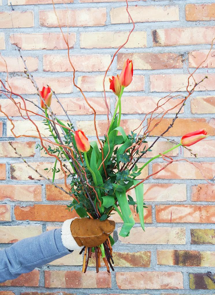 Tulppaanit – tulevat kevään mukana