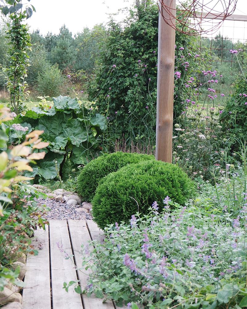 Lomaprojekti - Kehystä puutarha ja jaa se tiloihin